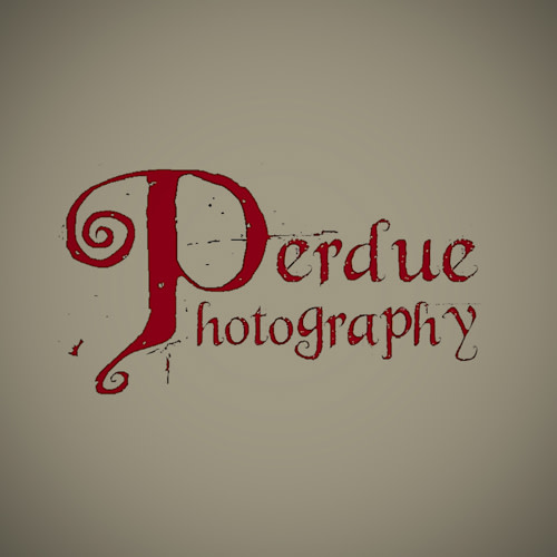 Perdue Photography LLC logo.