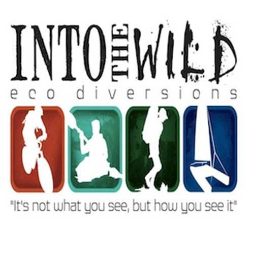 Into the Wild – Eco Diversions logo.