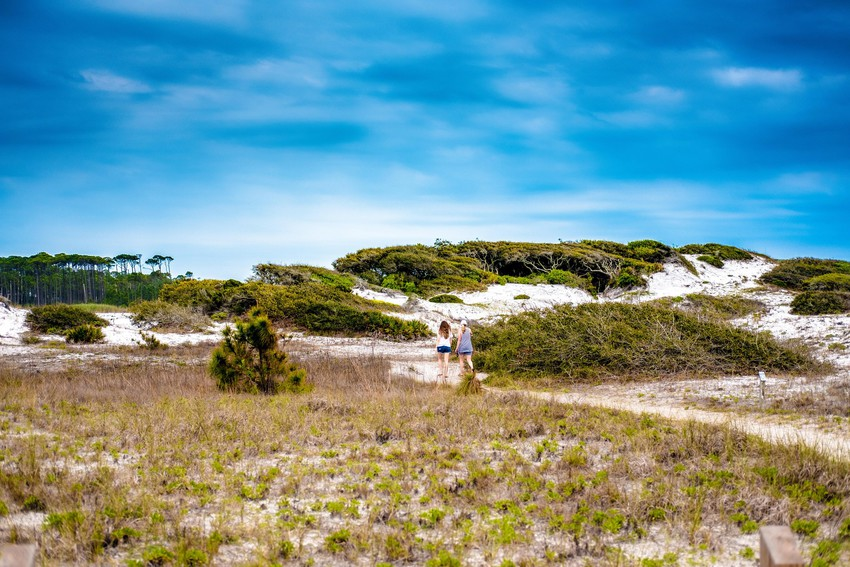 Exploring in Grayton Beach State Park