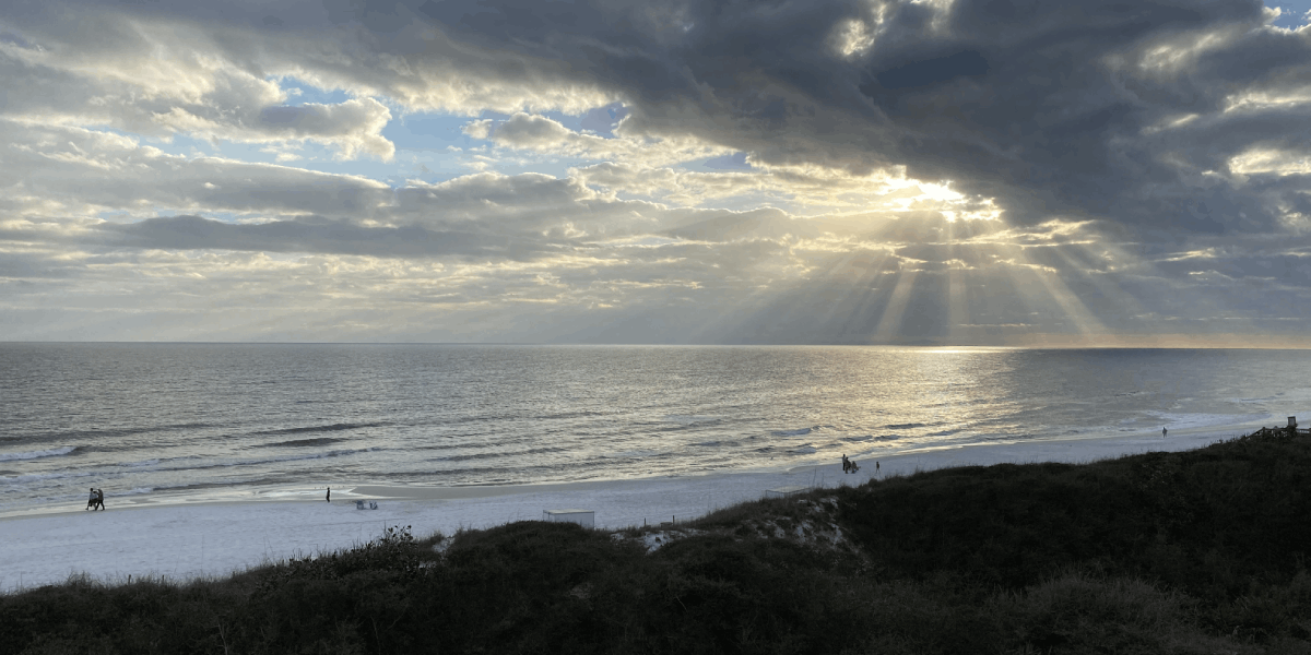 Dorothy Beal - Grayton Beach State Park in South Walton, Florida